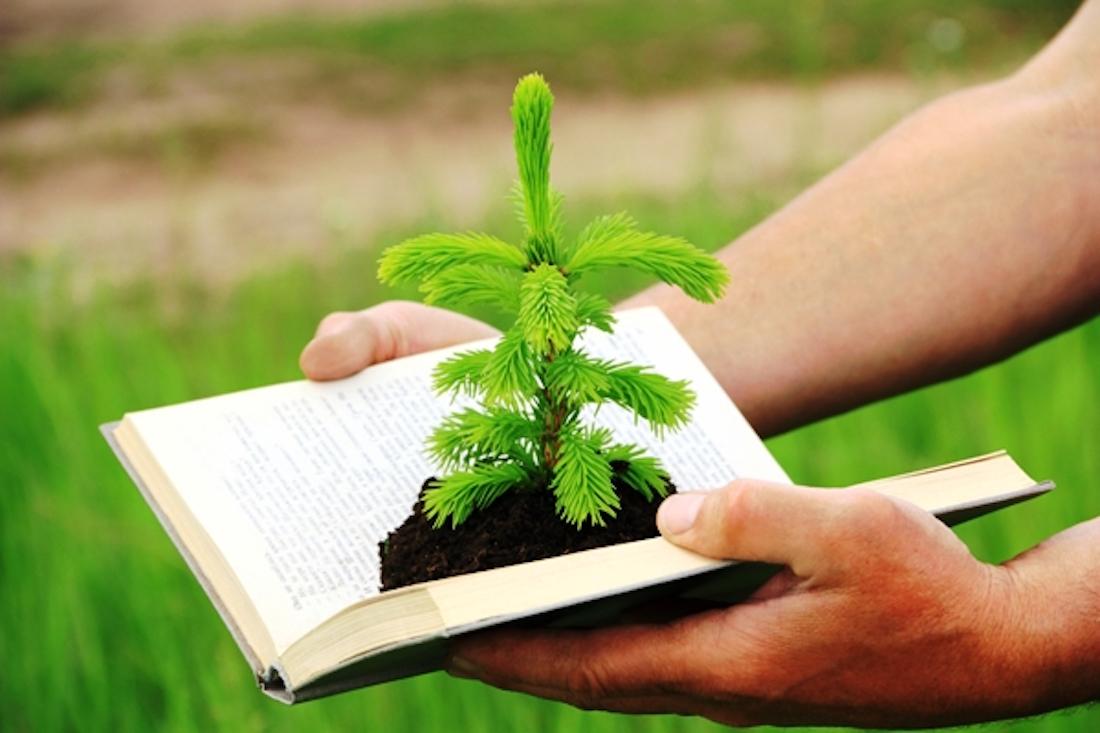 Agenda Ambiental El Salvador